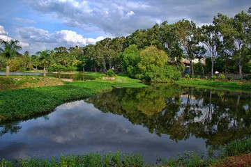LAKE VIEW IN LALBAGH