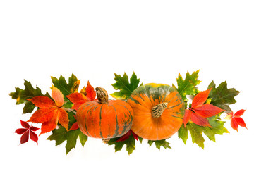 Autumn leaves and pumpkins on a white background, is isolated. Maple oak orange leaves , pumpkin for the Thanksgiving holiday. Autumn natural background.  layout,  with copy space. Flat lay,top view