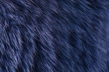 Blue fur macro texture material fashion fabric blur background