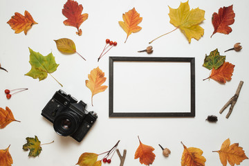Retro camera and wooden photo frame with autumn fall leaves. Flay lay, top view. Copy space
