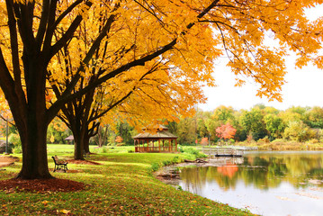Midwest nature background with park view. Beautiful autumn landscape with colorful trees around the pond and wooden gazebo in a city park. Lakeview park, Middleton, Madison area, WI, USA.