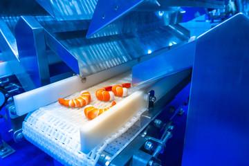 Food production. Shrimp on conveyor belt. Seafood production. Food production equipment.