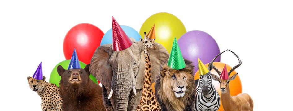 Wild Animal Birthday Party Web Banner
