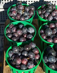 Basket of grapes.