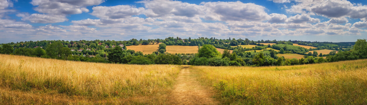 Panorama or rural Surrey landscape