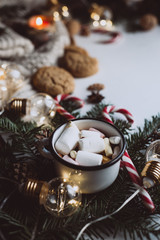 Winter hot drink. Chocolate or cocoa with marshmallow, cookies, candy on white background.