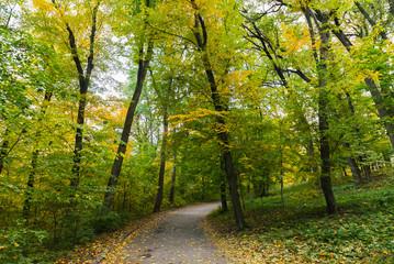 Dendropark Sofievka landscape