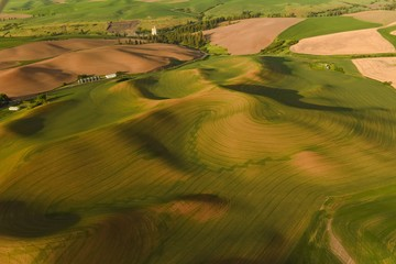 Scenic roads surrounded by wheat fields in spring - aerial