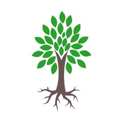 Tree and root logo, tree and root icon