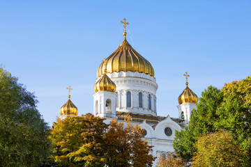 Moscow, Russia, Cathedral of Christ the Saviour among autumn foliage. The Cathedral of Christ the Saviour is the largest Church of the Russian Church. Its height is 105 m
