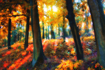 Deep in autumn forest. Natural composition
