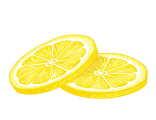 Lemon Slice, icon illustration isolated on white background.
