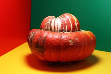 orange pumpkin on colorful background. Autumn harvest