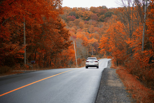 Driving on the highway and chasing the gold colours of Fall, Muskoka, Ontario, Canada.