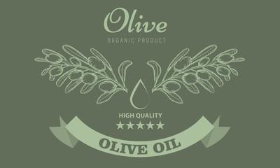 Olive oil package design for label with vintage sketch style. Vector Illustration.