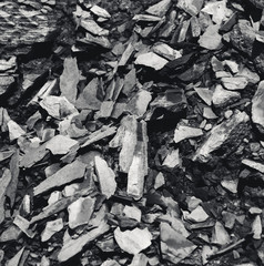 Stone pieces of sedimentary rock resembling timber texture. Black and white photo.