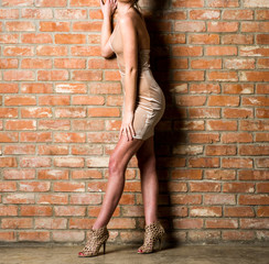 Model in a Brown Dress Against a Brick Wall