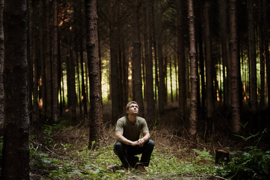 Man sitting on tree stump in forest and looking up