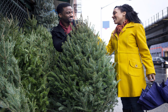 Couple shopping for Christmas tree