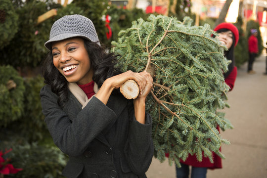 Cheerful woman carrying Christmas tree on shoulder