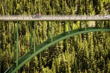 Bridge against forest