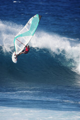Man windsurfing in sea