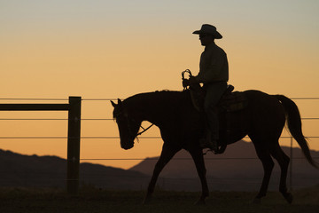Silhouette man riding horse against clear sky in farm