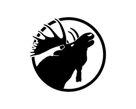 Vector Beautiful Animal Moose Head Sign Symbol Icon Silhouette Logo Design Inspiration