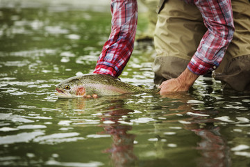 Midsection of man holding Brown trout while bending at lake