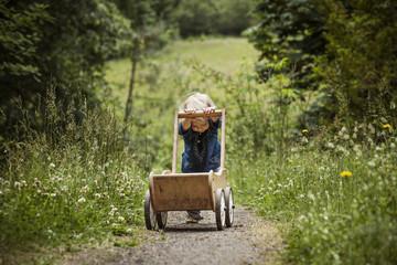 Boy pushing wheelbarrow on footpath in forest