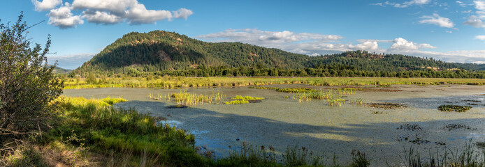 Thompson Lake Wildlife Refuge. Harrison, Idaho