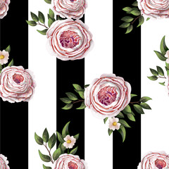 Pink English roses seamless pattern on a stripes background. Vector.
