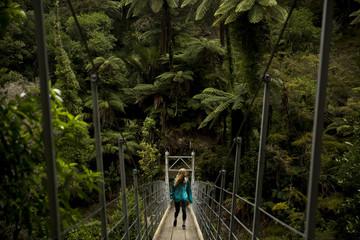 Hiker crossing a bridge in a jungle