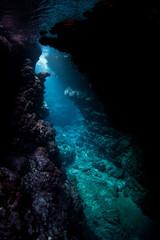 Fototapete - Dark Cavern Underwater in Solomon Islands