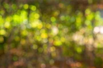 Background with green bokeh
