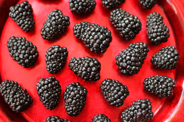 Fresh organic Blackberries on a red plate