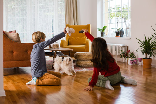 Children playing with their dog