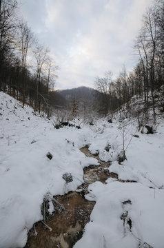 Mountain stream frozen in winter