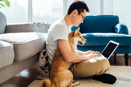 Man using laptop with dog