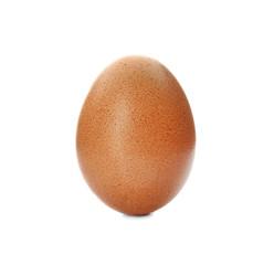 Raw brown chicken egg on white background