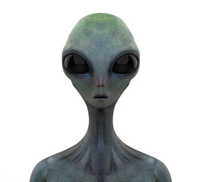 Alien Creature Isolated