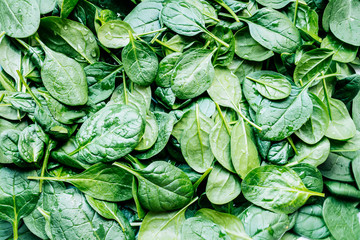 Close up of fresh spinach