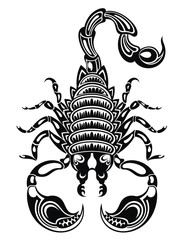 Scorpion illustration .Scorpion icon. Vector scorpion.