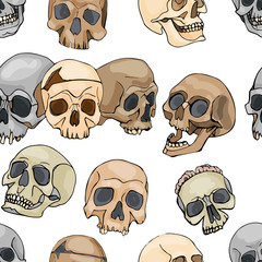 pattern with skulls, vector