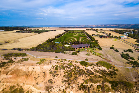 aerial view of farmland on the coast, McLaren Vale, wine country