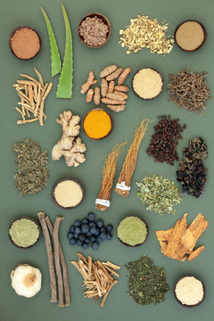Adaptogen food collection with herbs, spices, fruit and supplement powders. Used in herbal medicine to help the body resist the damaging effect of stress and restore normal physiological functioning.