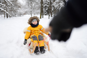 Little boy enjoying a sleigh ride