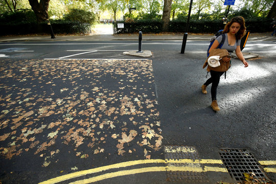 A woman crosses the road, where the fallen autumn leaves have made a pattern, in central London