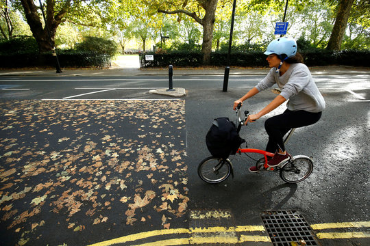 A woman cycles her bike along a road, where the fallen autumn leaves have made a pattern, in central London