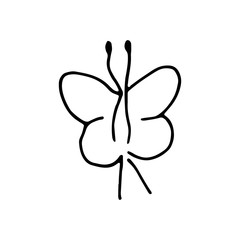 butterfly icon. sketch isolated object